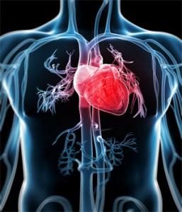 periodontal disease heart disease link